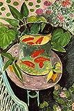 Henri Matisse Goldfish Art Print Poster 24x36 inch