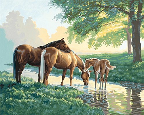 Dimensions Horses by a Stream Paint by Numbers for Adults, 16'' W x 20'' ()
