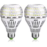 SANSI A21 22W (250-200Watt Equivalent) Omni-Directional Ceramic LED Light Bulbs–3000 lumens, 5000K Daylight, CRI 80+, E26 Medium Screw Base Home Lighting (2Pack)