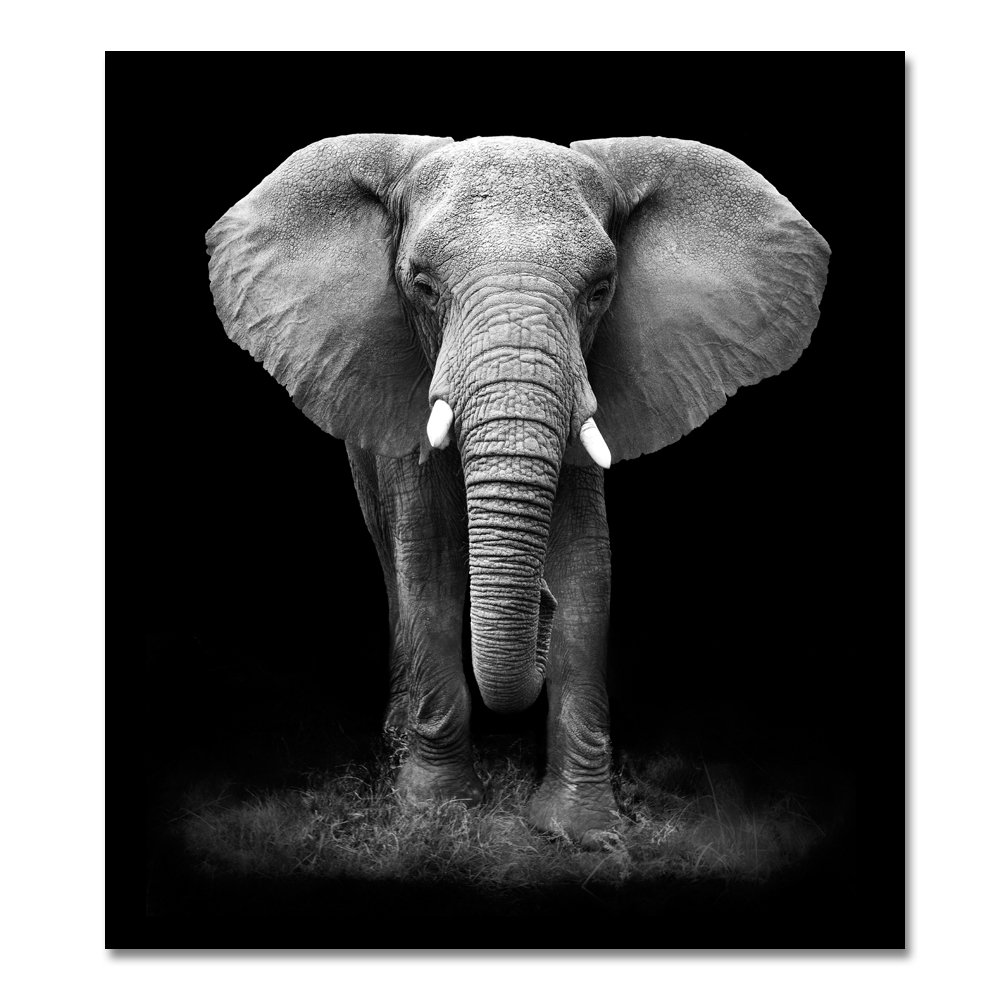 Amazon com african landscape scenery print painting beautiful elephant animal wall art on canvas for home decor framed 20 x 24 inch posters prints
