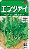 サカタのタネ 実咲野菜3371 エンツァイ 00923371