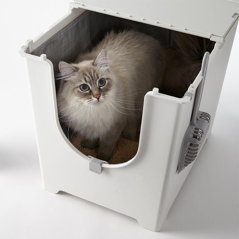 Mejores areneros para gatos de 2019 3