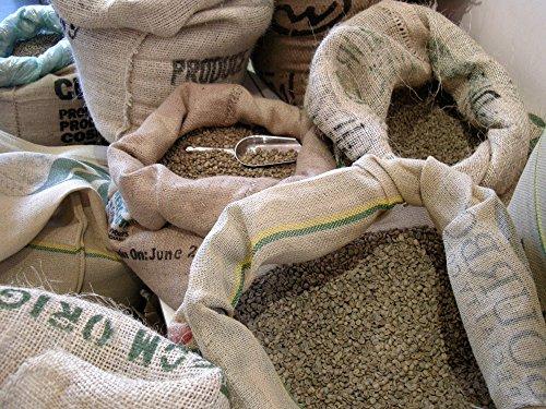 Green Unroasted Fresh 100% Arabica Coffee Beans, 5 Lb. Bag, RhoadsRoast Coffees (Panama Red Lolita Paso Ancho SHB E/p Coffee Beans)