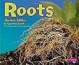 Roots (Plant Parts)