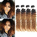 IMAYLI Brazilian Ombre Deep Wave Virgin Hair Weave 4 Bundles Wet and Wavy Brazilian Deep Curly Hair Bundles Ombre Human Hair Extensions Two Tone Color 1B/30(14 14 14 14)