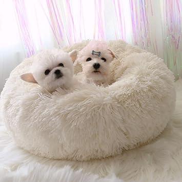 Camas de perros pequeños