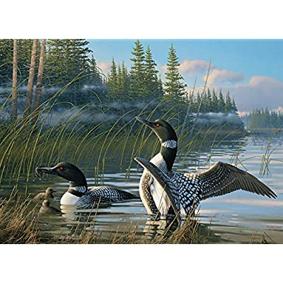 Cobble Hill Common Loons Jigsaw Puzzle (1000 Piece): Toys & Games