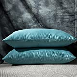 "Globon Luxurious White Goose Feather and Down Bed Pillows, King Size 20""x 36"", 460 TC,100% Cotton Sateen shell,Three Chambers ,Hypoallergenic , Medium Firm and Soft Support, Set of 2, Blue"