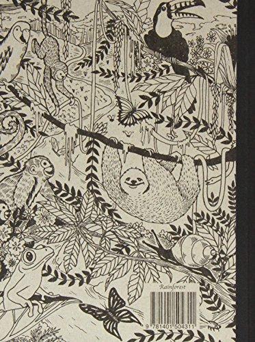 Michael Roger, Book Decomposition Rainforest, 1 Each -