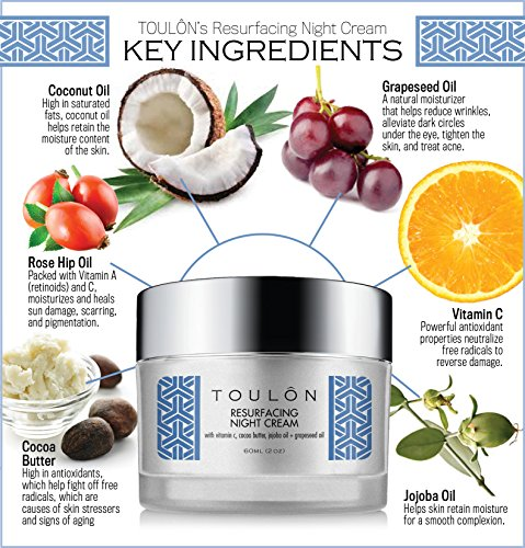 Night Face Cream For Women - Best Natural Face Moisturizer for Dry Skin with Vitamin C, Cocoa Butter & Grapeseed Oil to Build Collagen, Reduce Fine Lines & Firm Neck and Decollete by TOULON (Image #2)
