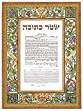 Fill In - Ketubah Marriage Certificate Custom Print K-09c Vinyards With color By Simha Shalom