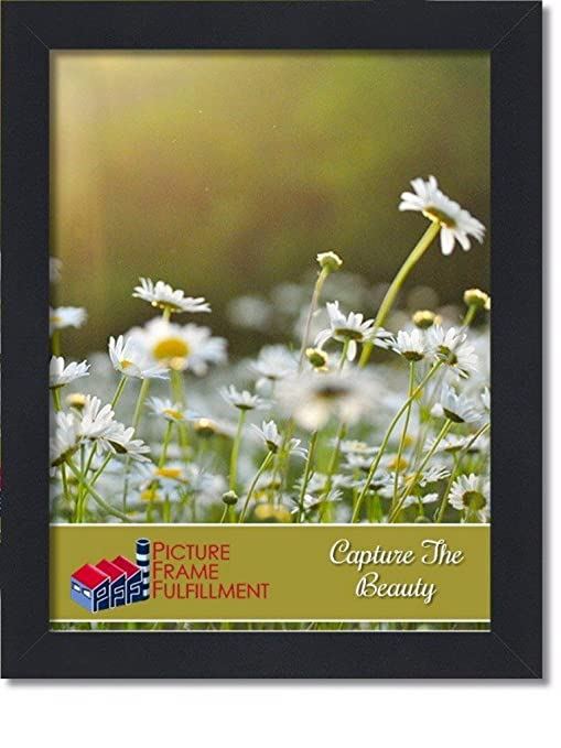Amazoncom Black 18 By 24 Inch Picture Frame Smooth Finish 125
