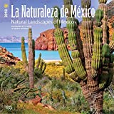 La Naturaleza de Mexico Natural Landscapes of Mexico 2018 12 x 12 Inch Monthly Square Wall Calendar, Mexico Landscapes of Mexico