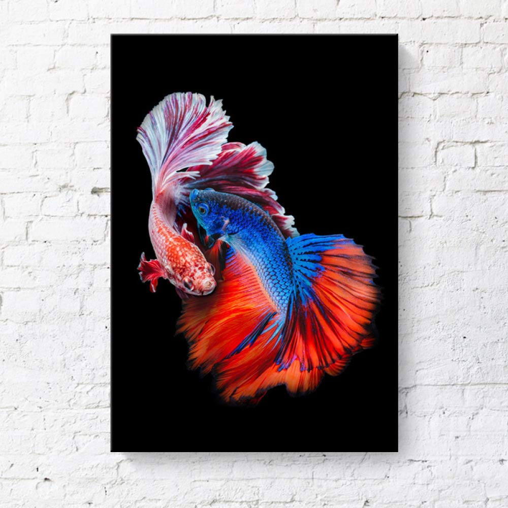 RTCKF Pintura Decorativa Color Betta Peces Tropicales Marco ...