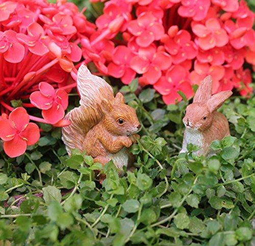 Pretmanns Fairy Garden Fairy Accessories – Miniature Fairy Figurine & Furniture – 14 Piece Starter Kit by Pretmanns (Image #6)