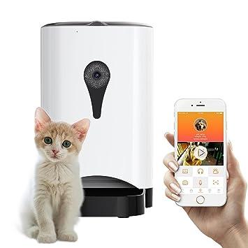 jar gravity waterer new dog v delivery food mason fresh plastic water itm feeder dispenser cat pet country storage system