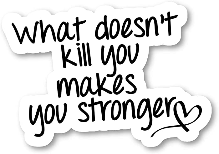 """What Doesn't Kill You Makes You Stronger Sticker Inspirational Quotes Stickers - 2 Pack - Laptop Stickers - 2.5"""" Vinyl Decal - Laptop, Phone, Tablet Vinyl Decal Sticker (2 Pack) S9352"""