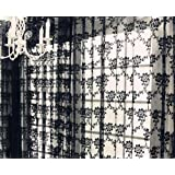 NAVADEAL Pack of 2 Black French Lace Design Floral Pattern Sheer Window Curtain Panel Drape, Hangs On Rod Pocket, Elegant Dec