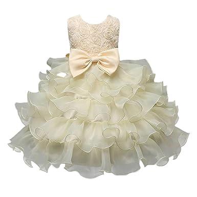 Ruhiku GW Princess Baby Girls Dress Kids Lace Ruffles 3D Rose Tutu Party Wedding Bridesmaid Formal