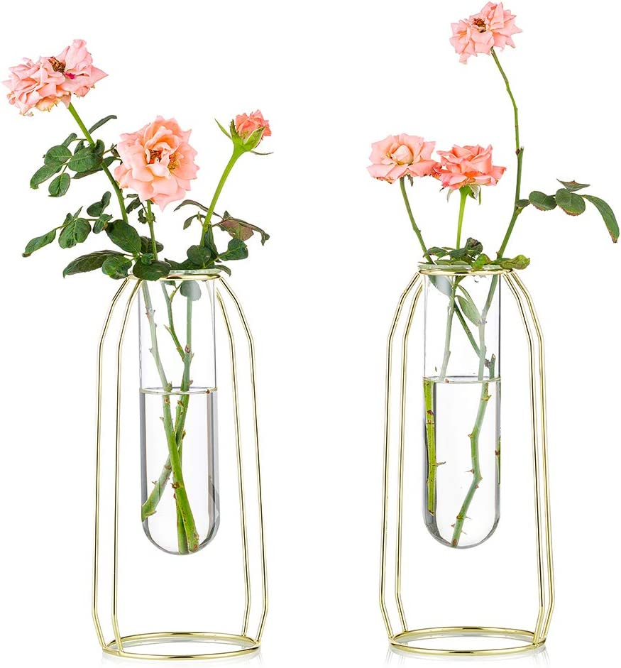 Nuptio 2 Pcs Flower Vases with Iron Art Frame 23.5cm Height, Geometric Plant Pot, Centerpiece Plant Vase, Plants Tabletop Display Holder for Wedding Indoor Table Office Living Room Decor, Gold