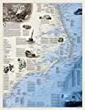 National Geographic: Shipwrecks of the Outer Banks Wall Map (28 x 36 inches) (National Geographic Reference Map) by