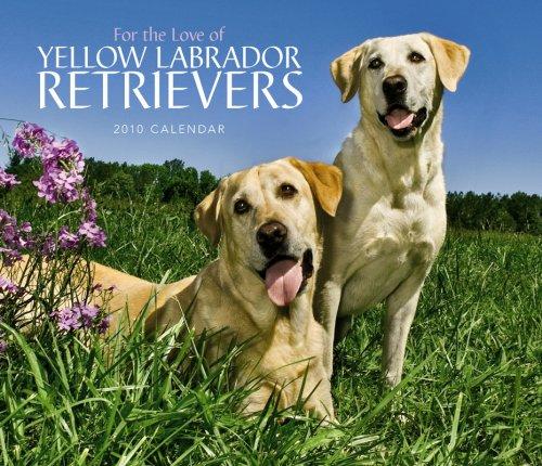 Retriever 2010 Calendar - For the Love of Yellow Labrador Retrievers 2010 Calendar