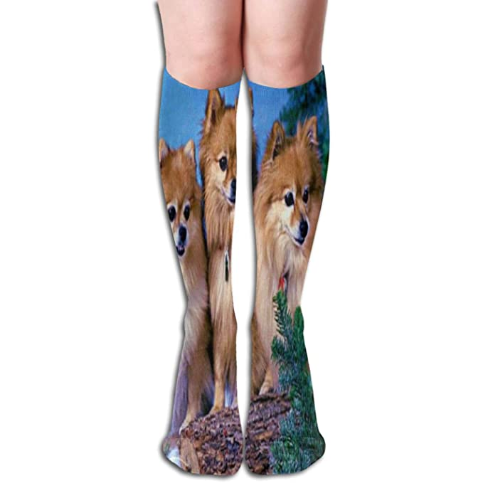 b249f9ebc Image Unavailable. Image not available for. Color  Women s Pomeranian Beautiful  3D Printing Kawaii Knee Socks Fashion