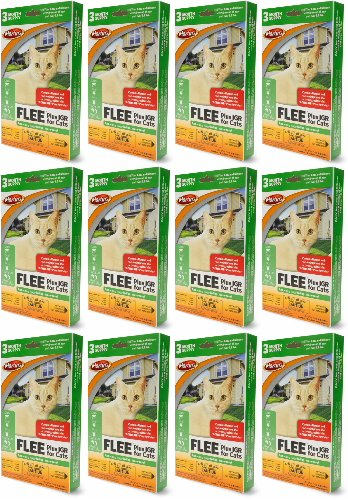 Martin's FLEE Plus IGR For Cats 3 Month Supply, 12ct (36 Applicators)