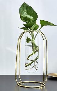 Iwtmm Vase for Flower, Desktop Crystal Glass Test Tube Plant Terrarium, Metal Plant Stand, Vase for Plants Indoor, Office Home Garden Decor, Rose Gold
