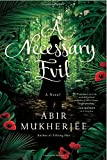 A Necessary Evil: A Novel