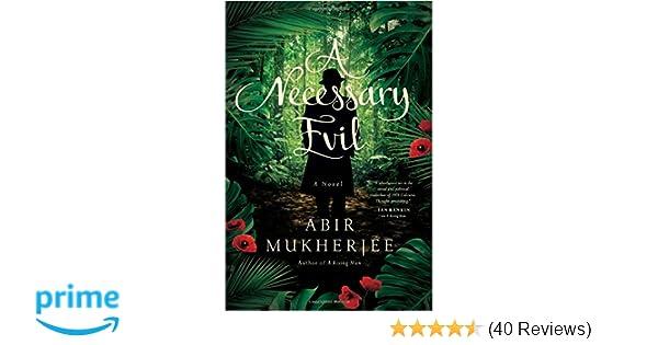 Amazon A Necessary Evil A Novel Wyndham Banerjee Series