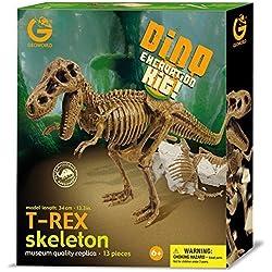 Geoworld Dino Excavation Kit - T-Rex Skeleton by Geoworld