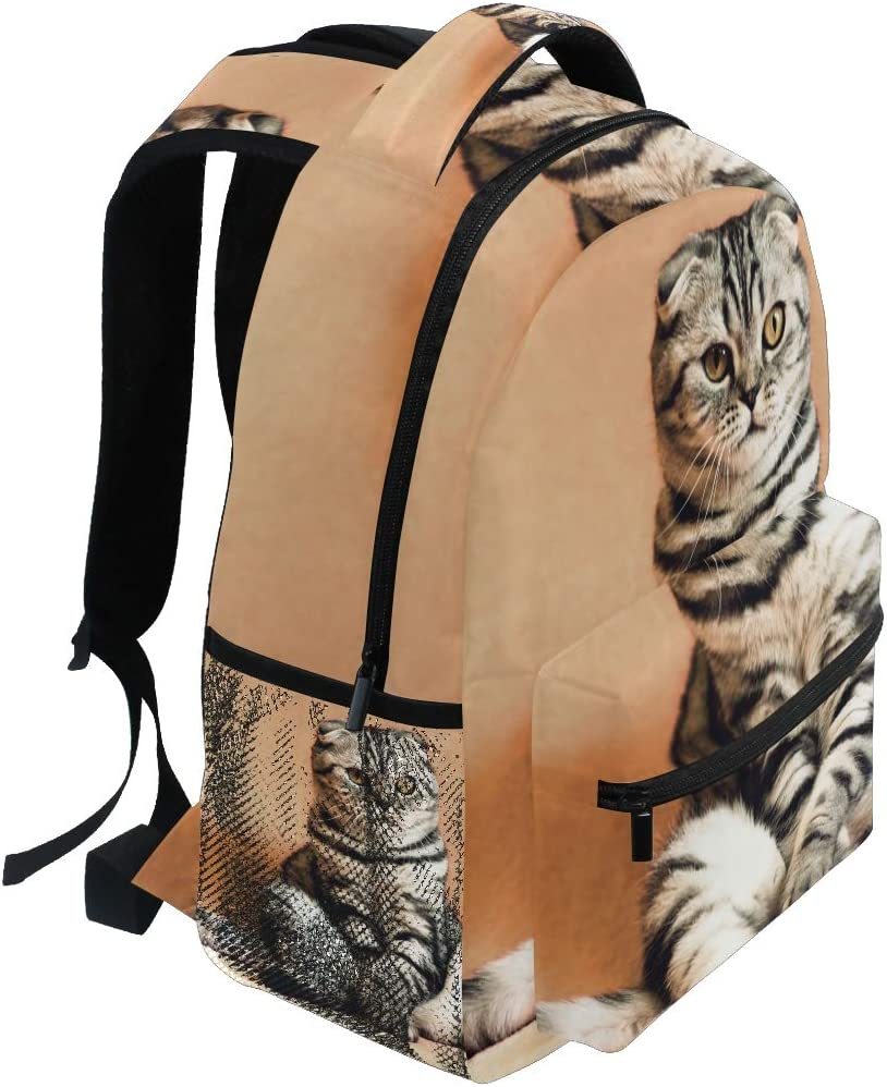 Animal Cat Cute Daypack Backpack School College Travel Hiking Fashion Laptop Backpack for Women Men Teen Casual Schoolbags Canvas