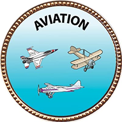 Keepsake Awards Aviation Award, 1 inch Dia Gold Pin Creative Arts and Hobbies Collection: Toys & Games