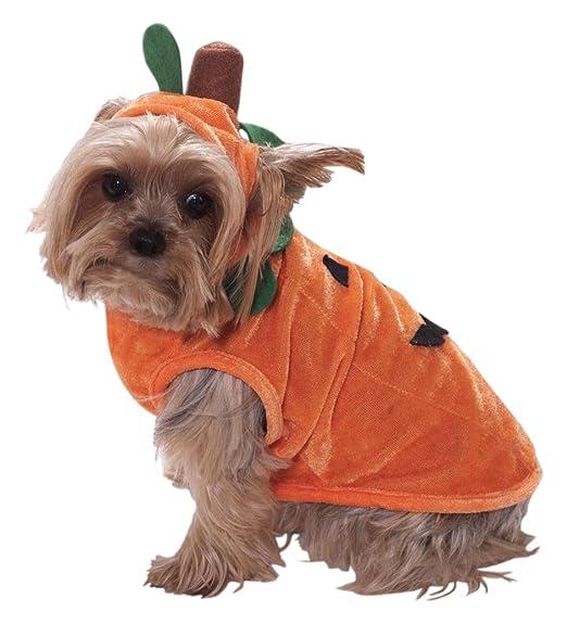 Forum Novelties Pumpkin Pet (Promo) Costume Small  sc 1 st  Amazon.com & Amazon.com: Forum Novelties Pet Pumpkin Costume for Dogs and Cats ...