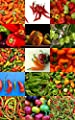 PEPPERS MIX, edible fruits exotic vegetables mixed sweet pepper spicy 50 seeds