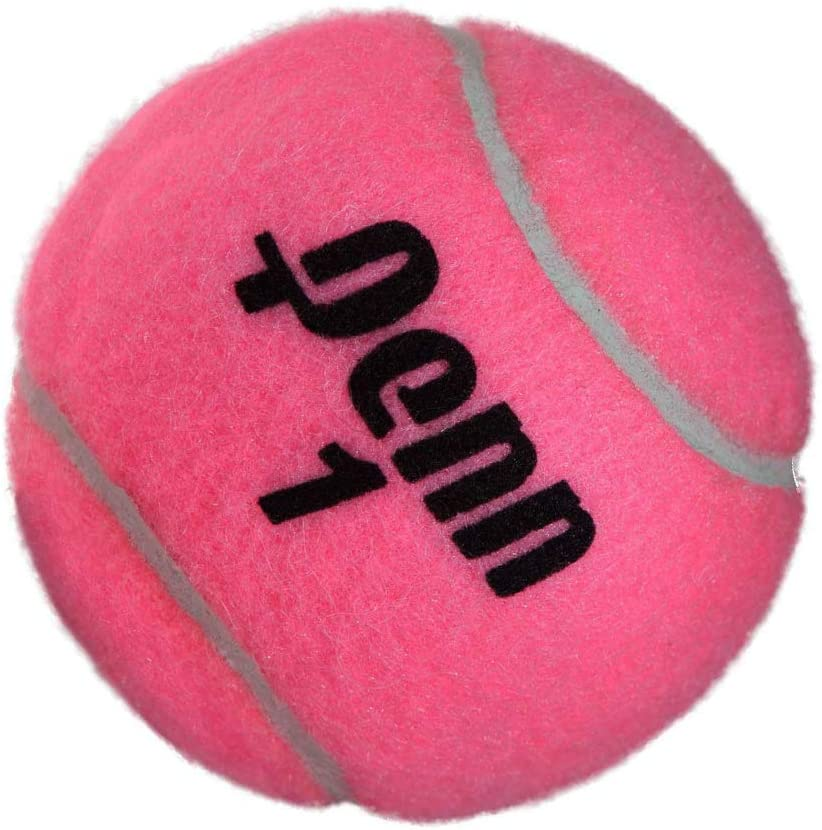 Penn Pink Championship Extra Duty Tennis Ball Can