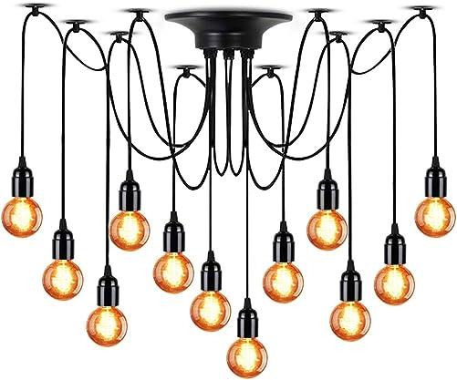 LAMPUNDIT 12-Light Chandelier, Adjustable DIY Ceiling Spider Pendant Lighting, Industrial Hanging Light Fixture Each with 6ft Wire