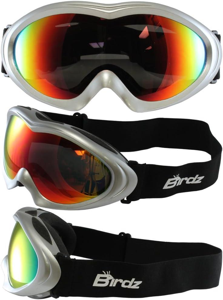 Birds Eyewear Icebird Ski Goggles with Silver Padded Frame Anti Fog Double Lens 100 UV Protection New