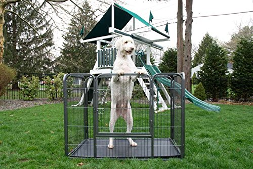 Iconic Pet Heavy Duty Rectangle Tube Pet Training Kennel Crate, 36'' Height by Iconic Pet