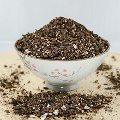 (6 Quarts Special Blend Shohin Bonsai Tree Soil - with Mycorrhizae, Lava & Sand)
