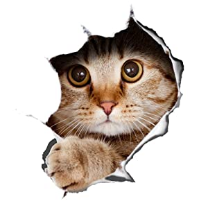 Winston & Bear 3D Cat Stickers 2 Pack - Peeking Cat Sticker for Wall, Fridge, Toilet and More - Retail Packaged Tabby Cat Decals