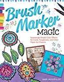 img - for Brush Marker Magic: Surprisingly Simple Color Effects for Cards, Scrapbooks, and Other Paper Art Projects book / textbook / text book