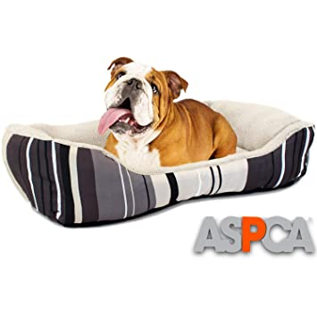 Amazon.com: Cama para perro, motivo a rayas de ASPCA, micro ...