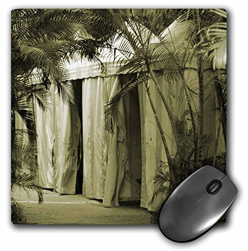 3dRose Susans Zoo Crew Photography - white tents behind palm fronds sepia - MousePad (mp_178652_1)
