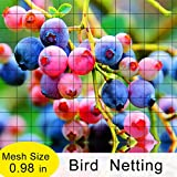 Agfabric Anti Bird Protection Net Fruit Vegetables Flower Garden Pond Netting Bird Catching Net, 14x14ft, Balck