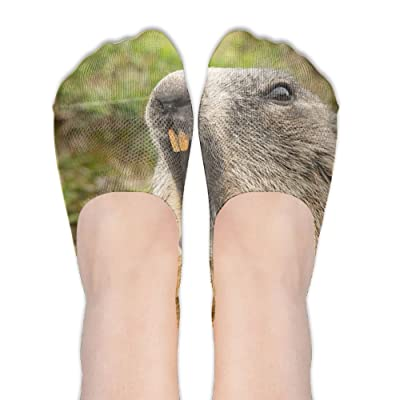 DISXHSH Thin Hidden No Show Liner Groundhog Yawning Athletic Running Socks Non Slip Flat Boat Line