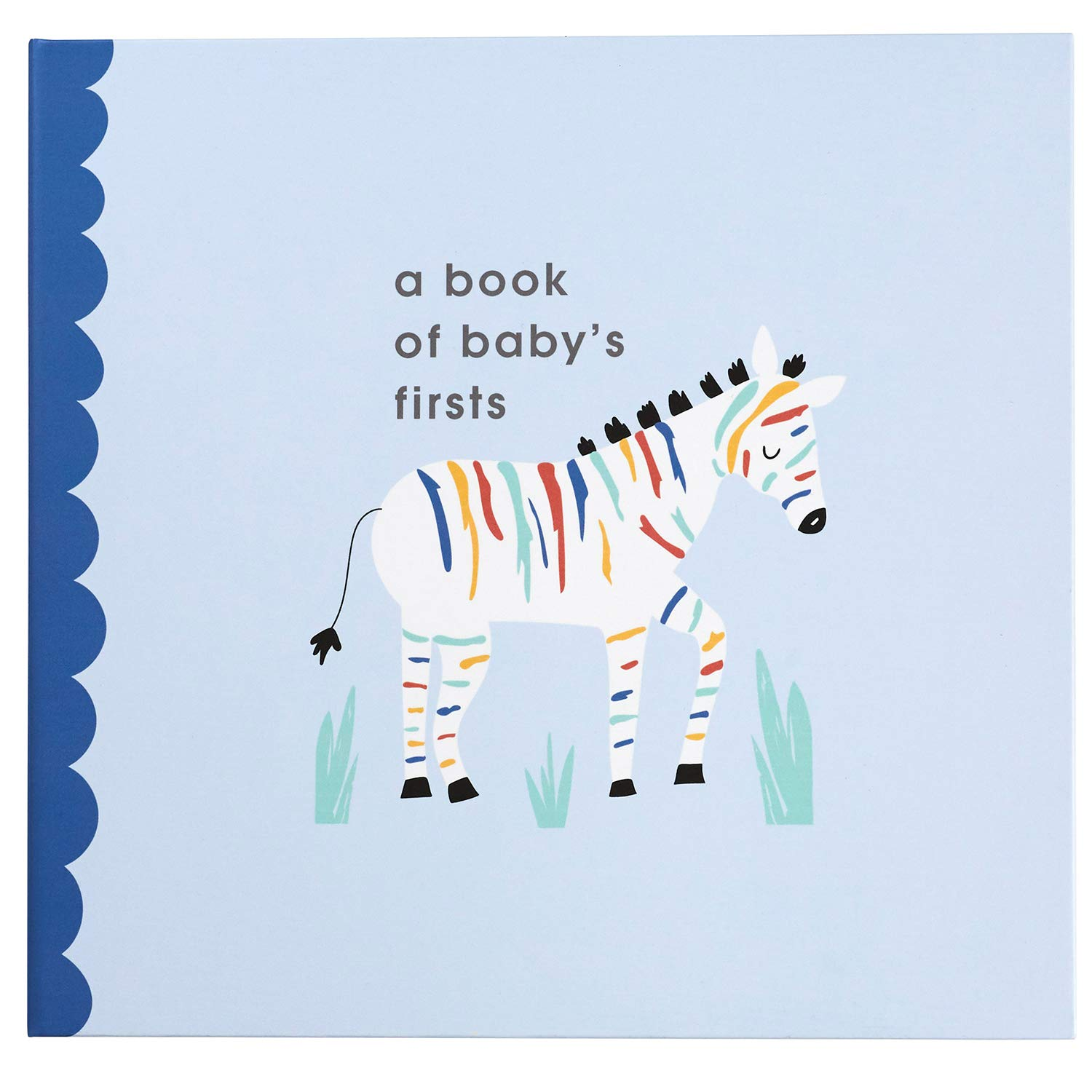 C.R 9.5 x 9 Gibson A Book of Babys Firsts Rainbow Zebra First Year Baby Memory Book