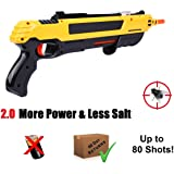 PanelTech Fly Gun Killer Salt Gun Mosquito Killer Gun for Flies Stink Bugs Pest Insect Mosquito 2.0