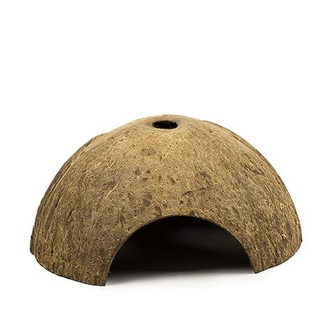 OMEM Cuevas de coco para reptiles, lagarto, araña, hámster, cangrejos de hierbas